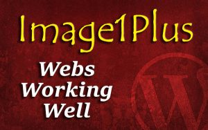 i1p-webs-working-well